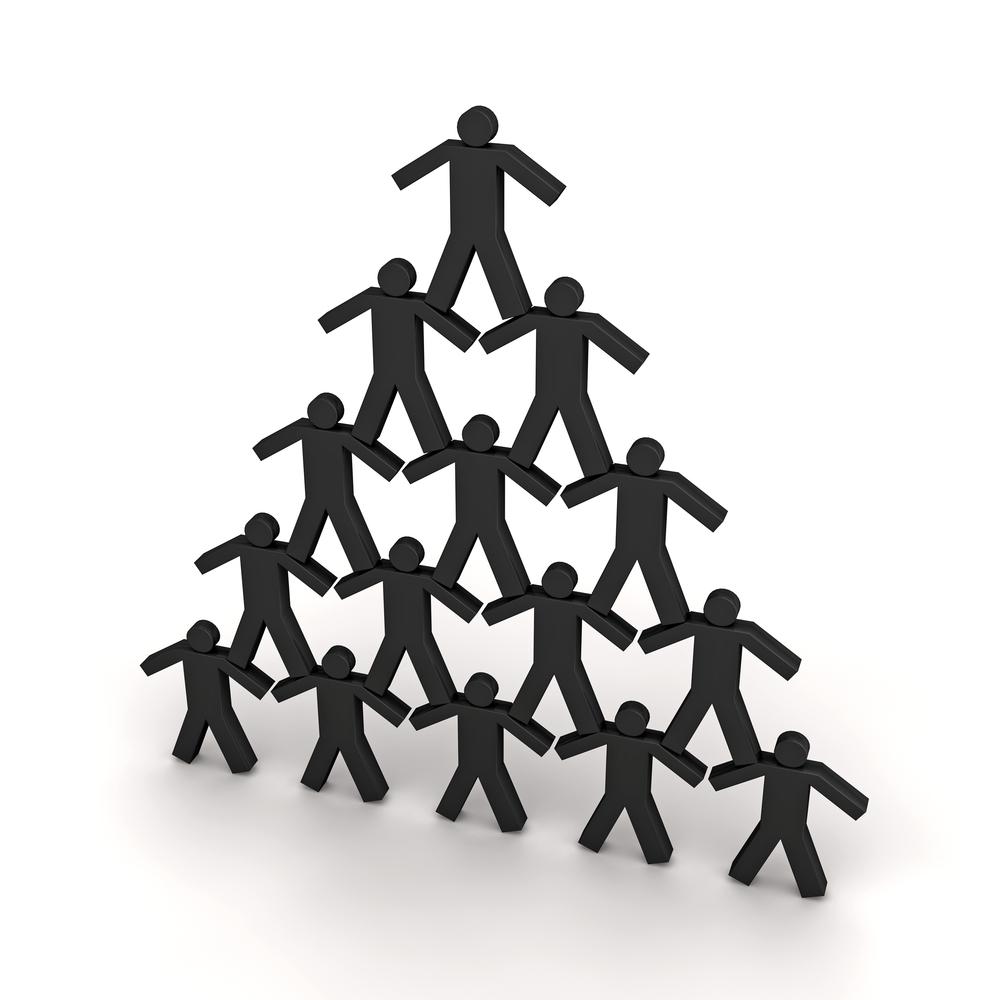 profilage-équipe-profil service expert